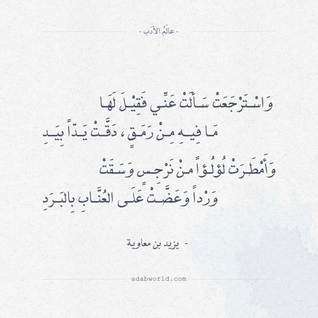 اجمل ابيات الغزل قيلت في الشعر ليزيد بن معاوية