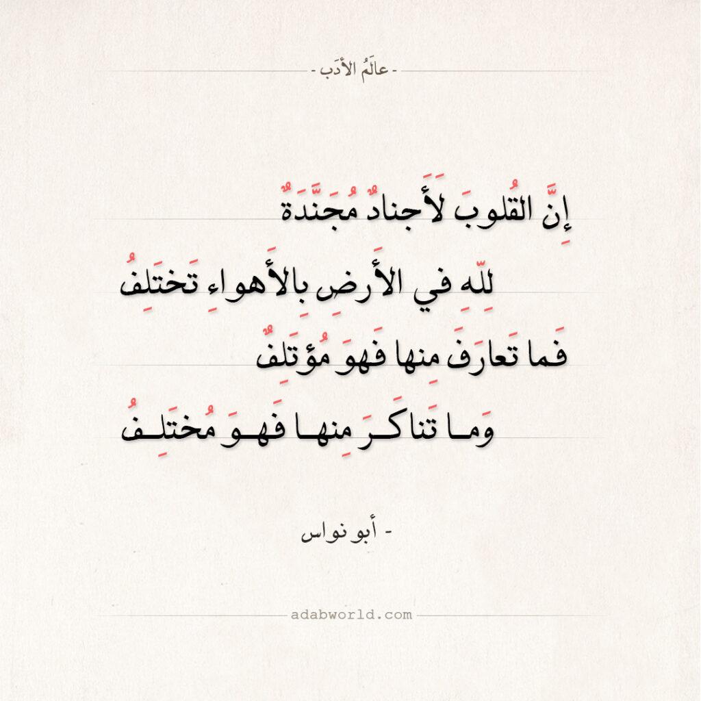 شعر أبو نواس - إن القلوب لأجناد مجندة
