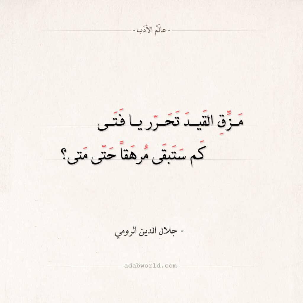 اقتباسات جلال الدين الرومي - مزق القيد تحرر يا فتى
