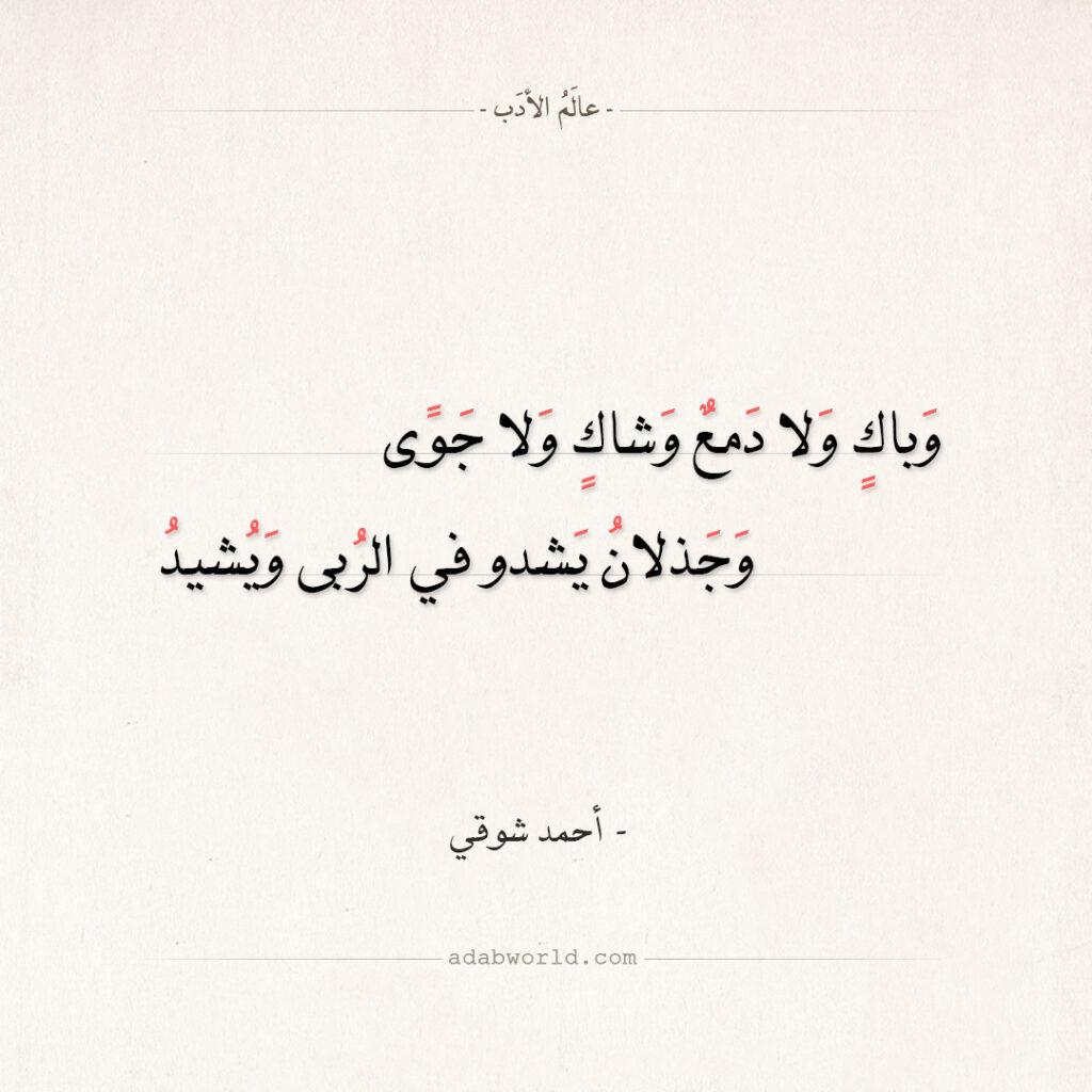 شعر أحمد شوقي - وباك ولا دمع وشاك ولا جوى